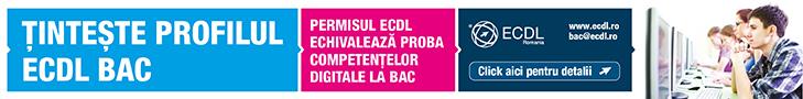 ECDL_2013_033_WebBanners_800x90px_v01